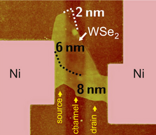 Atomic force microscopy image of a WSe2 flake on top of a burried multi-gate structure